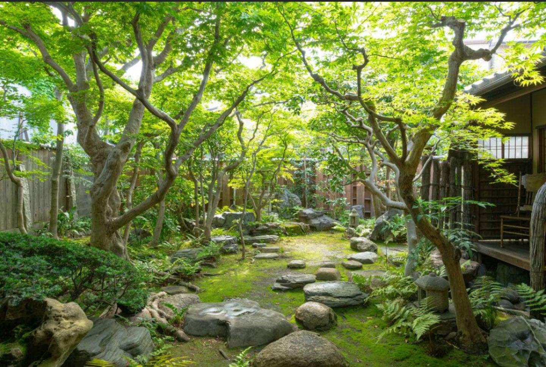 |京都|ゲストハウス|もみじの大きなお庭がある京都の町家で暮らしてみませんか。住み込みスタッフ募集