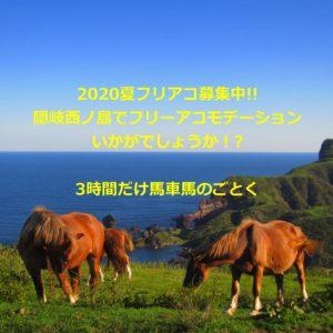 |島根|ゲストハウス|絶景の離島 青い海 夏のフリアコ